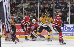 Pavel Zacha celebrates a goal in the Sting's 7-0 shutout of Guelph Nov. 14, 2015 (Photo courtesy of Metcalfe Photography)