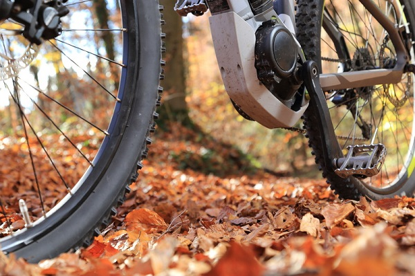 Pedelec Users Want Access To Meaford Trail