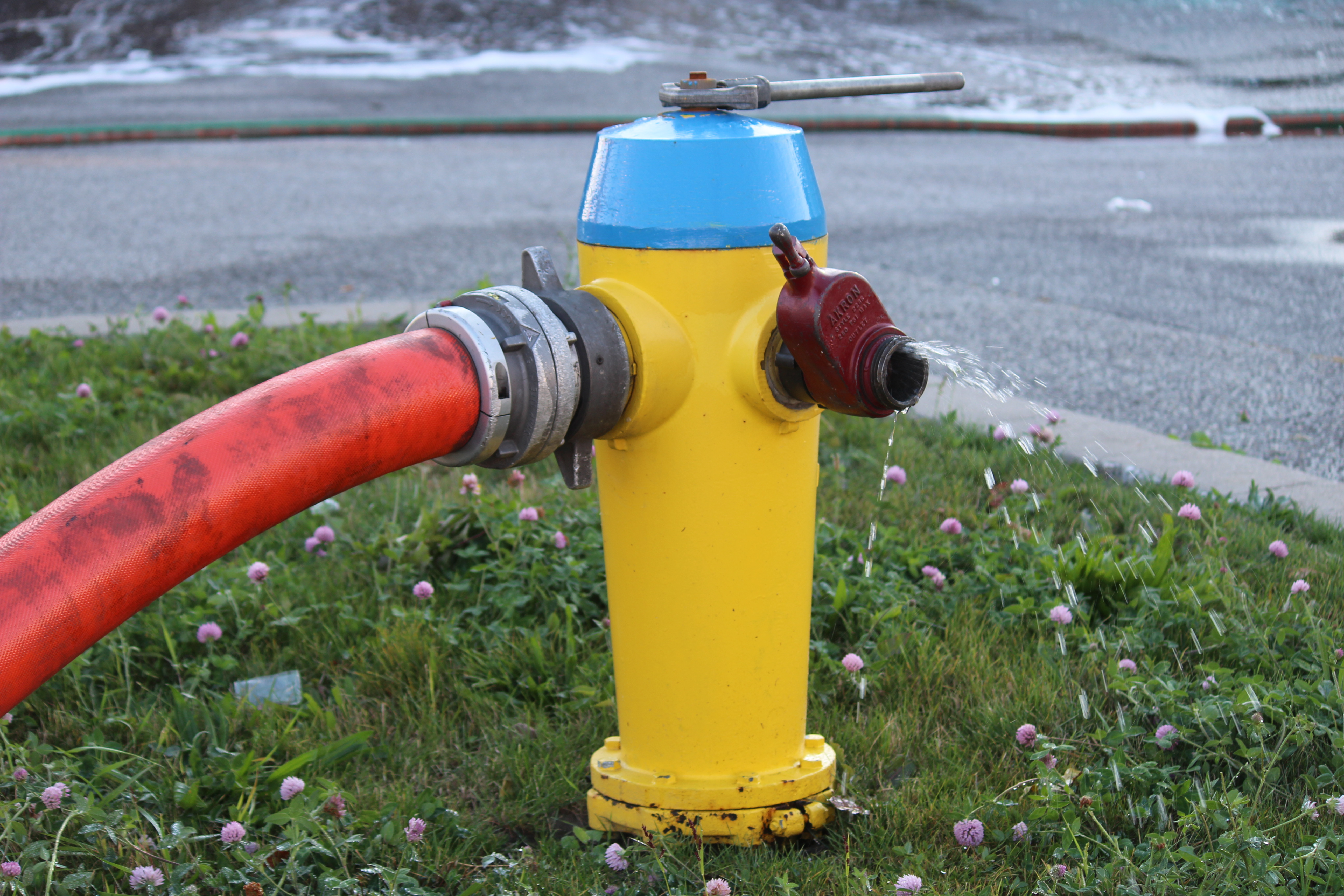 A fire hydrant. (Photo by Adelle Loiselle)