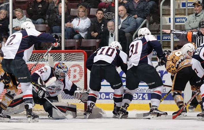 The Windsor Spitfires take on the Sarnia Sting, December 11, 2015. (Photo courtesy of Metcalfe Photography)