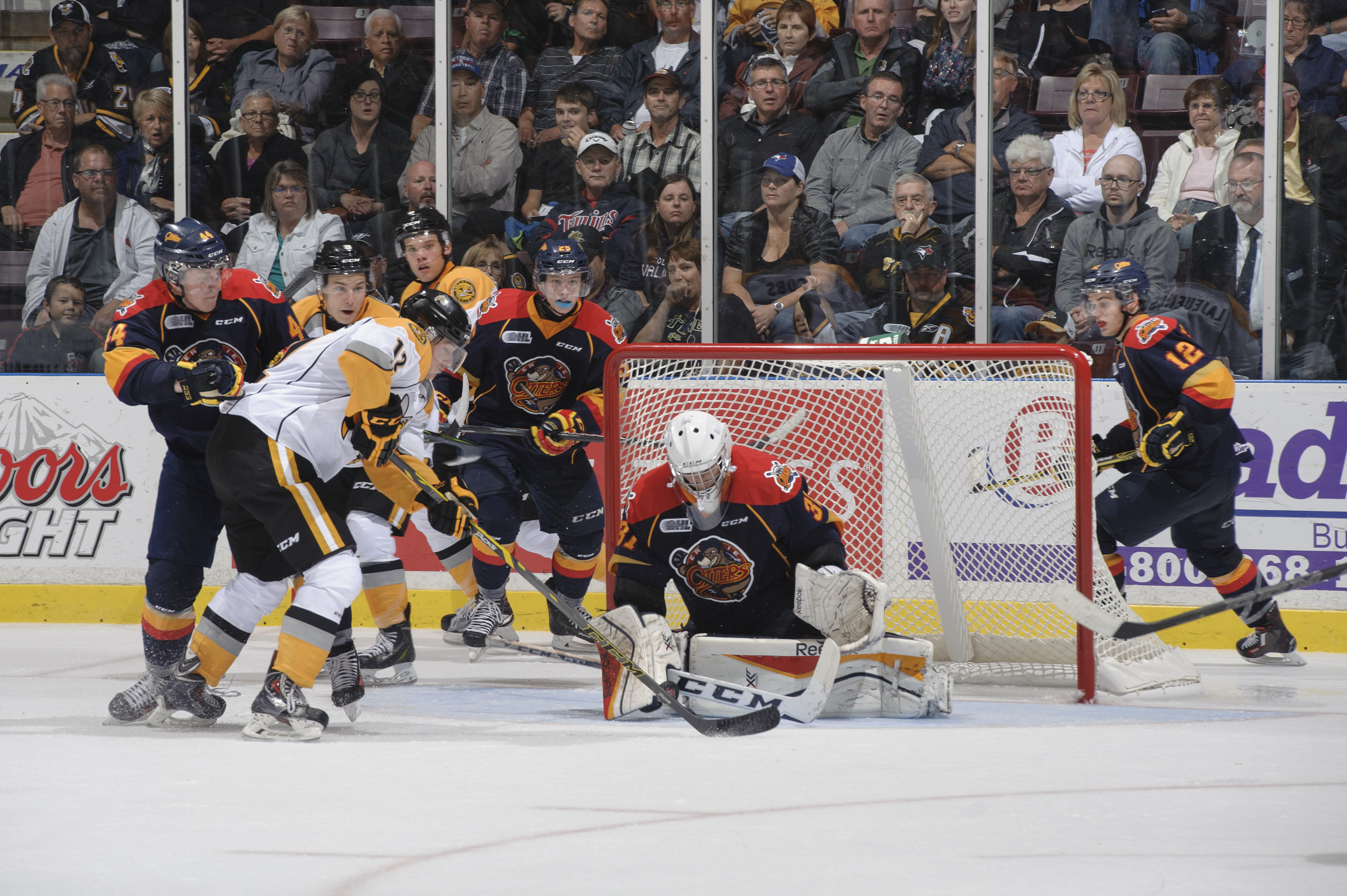The Sarnia Sting vs the Erie Otters September 2015 (Photo courtesy of Metcalfe Photography)