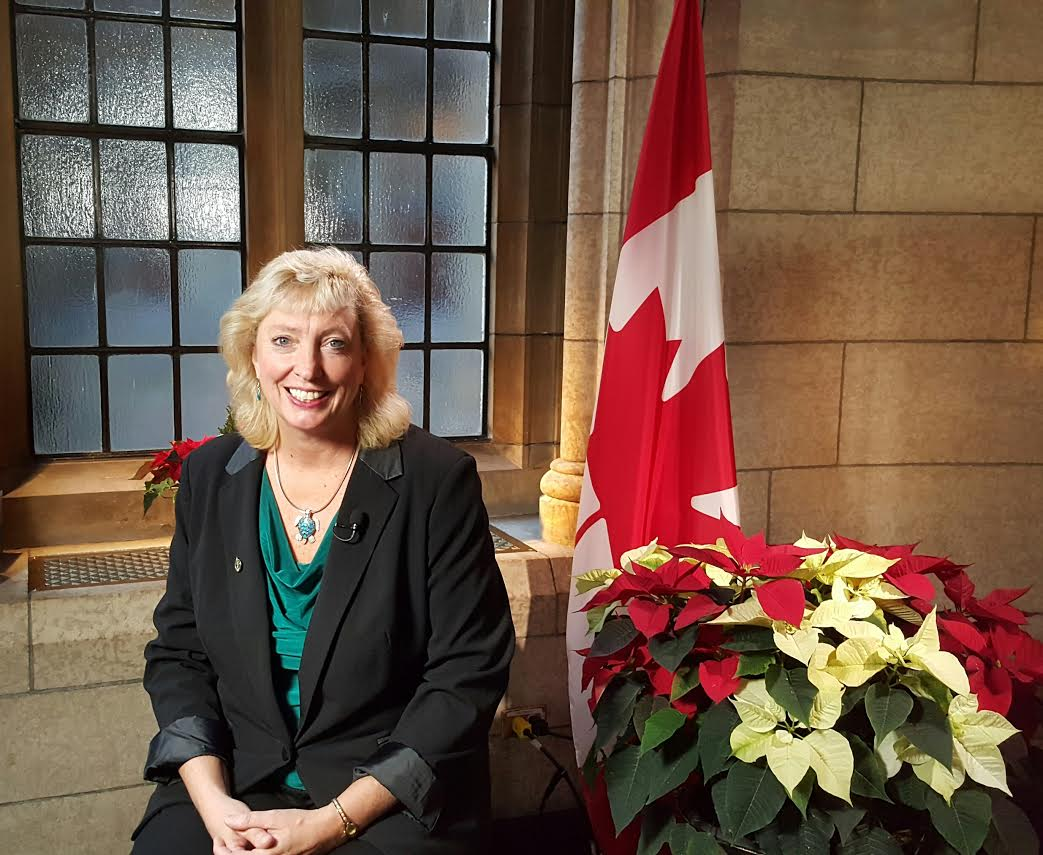 MP Marilyn Gladu (Submitted Photo)