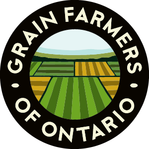 GFO Commentary: Good In Every Grain Outreach