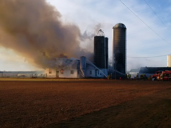 85 cows killed in barn fire on Sunset Dr. February 1, 2016. Photo courtesy of Elgin OPP