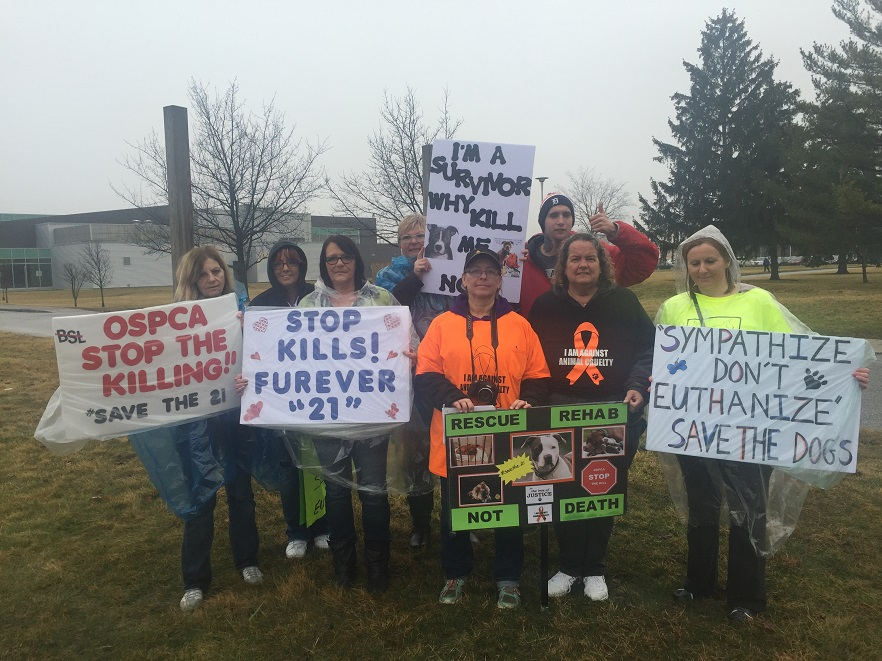 Dog protesters March 10-2