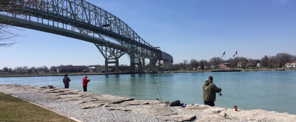 Sarnia fishing