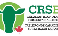 Canadian Roundtable For Sustainable Beef