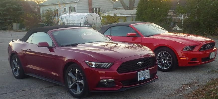 Mustangs submitted by Mike Bradley May 19