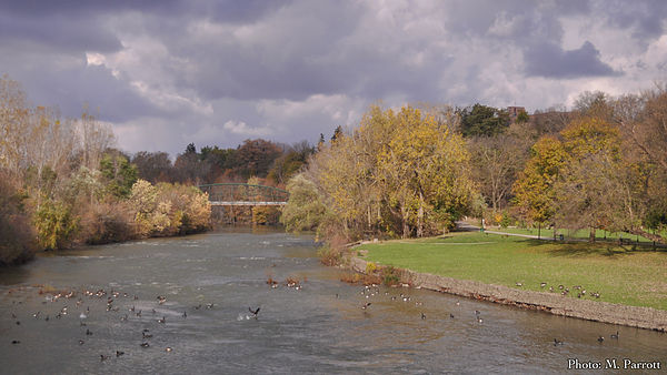 The Thames River. (Photo by M. Parrott courtesy Traverse The Thames)