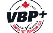 Verified Beef Plus