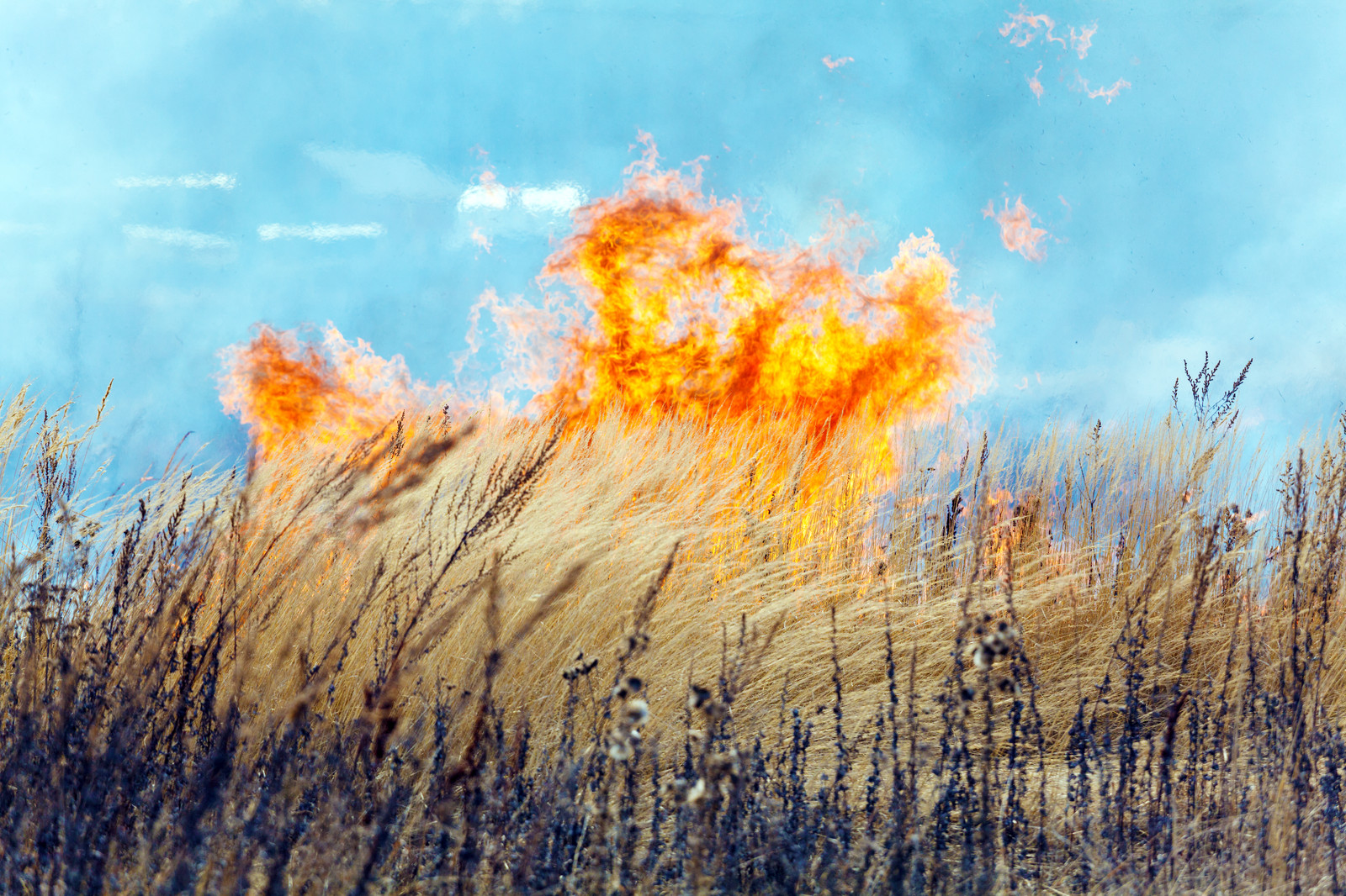 Chance of Field Fires High Due To Hot, Dry Weather