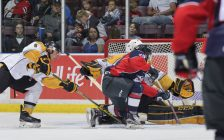 The Sarnia Sting take on the Windsor Spitfires, September 10, 2016. (Photo courtesy of Metcalfe Photography)
