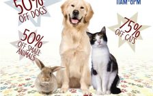 A promotional poster for the Windsor-Essex County Humane Society Black Friday sale set for November 25, 2016. (Photo courtesy the Windsor-Essex County Humane Society)