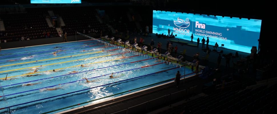 Athletes training at the WFCU competition pool prior to the FINA World Swimming Championships (25M). December 5, 2016. (Photo by Maureen Revait)