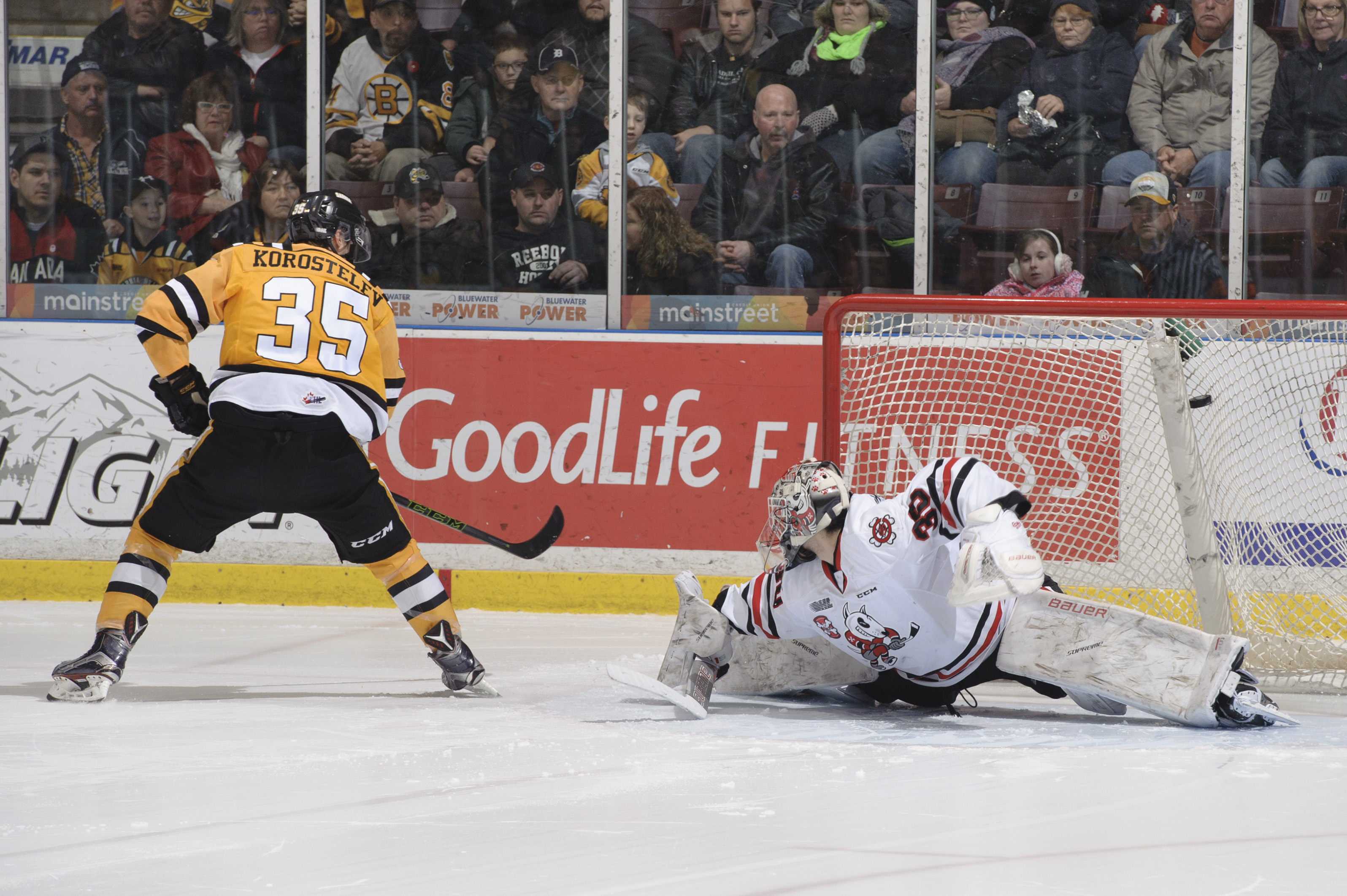 Sting Melt IceDogs in Shootout 4-3