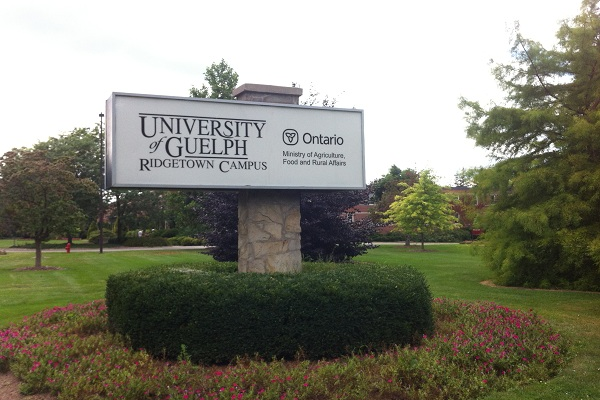 University of Guelph Ridgetown Campus. BlackburnNews.com File Photo