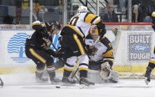 The Sarnia Sting Beat Hamilton 4-2 in OHL Play - Jan 11/17 (Photo Courtesy of Metcalfe Photography)