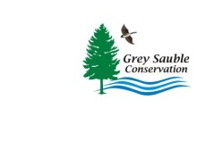 Grey Sauble Conservation Water Condition Statement Issued