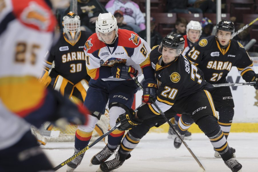 Sting Fall 5-3 To Otters