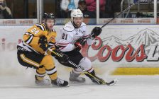 Kevin Spinozzi of the Sarnia Sting (24) follows the puck with Owen Sound's Jonah Gadjovich during the Attack's 9-3 win over the Sting at Progressive Auto Sales Arena on March 12, 2017 (Photo by Metcalfe Photography)