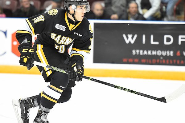 Anthony Salintri of the Sarnia Sting. (Photo courtesy of Aaron Bell via OHL Images)
