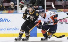 Sarnia Sting vs. Flint Firebirds, March 1, 2017. (Photo courtesy of Metcalfe Photography.)