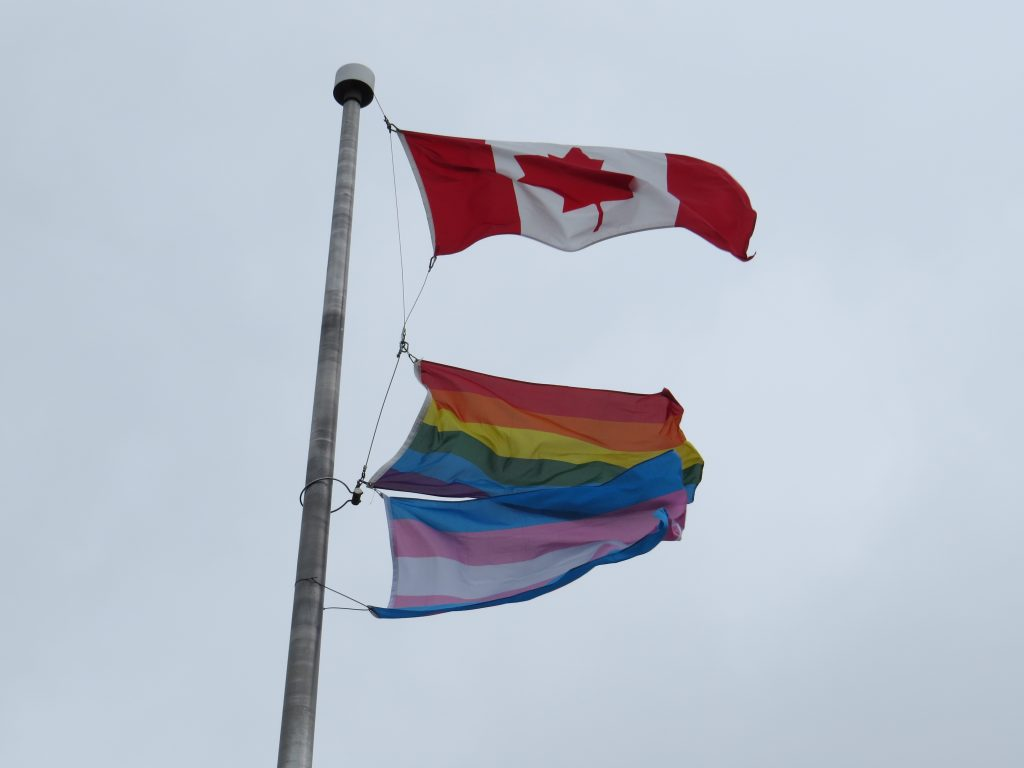 Pride, Transgender Flags