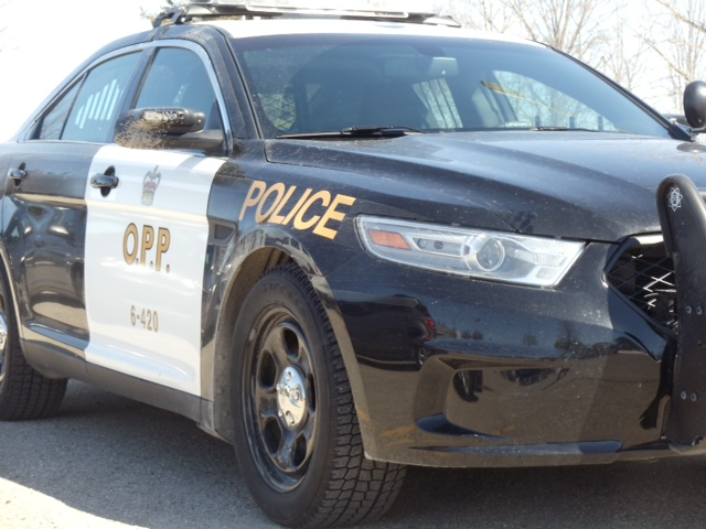 Windsor Teen Charged In Grand Bend