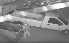 A Theft From a Lougar Ave. Compound - Apr 20/17 (Photo Courtesy of Sarnia Police)