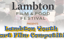 LaFFF Youth Short Film Competition Poster courtesy of forestfestivals.ca