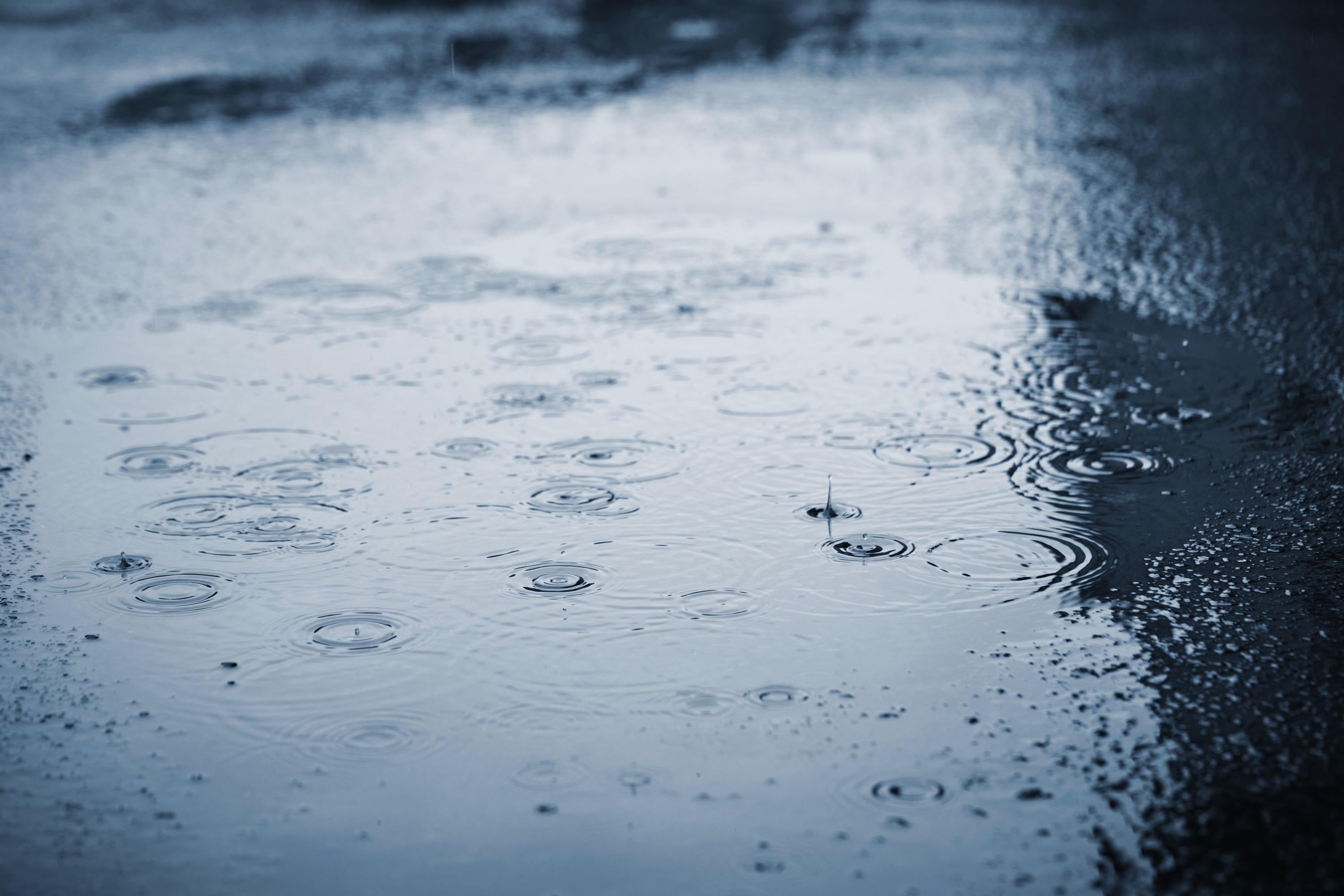 Significant Rainfall Expected In Region