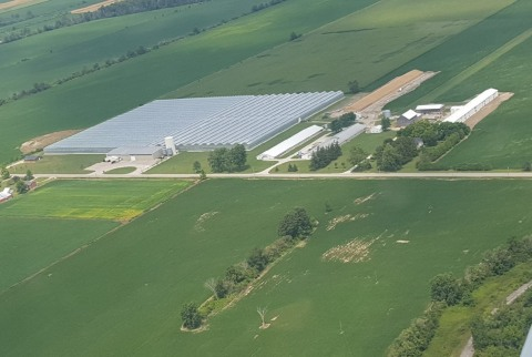 An aerial photo of an Enniskillen greenhouse facility that is to be converted to grow medical marijuana. (Handout.)