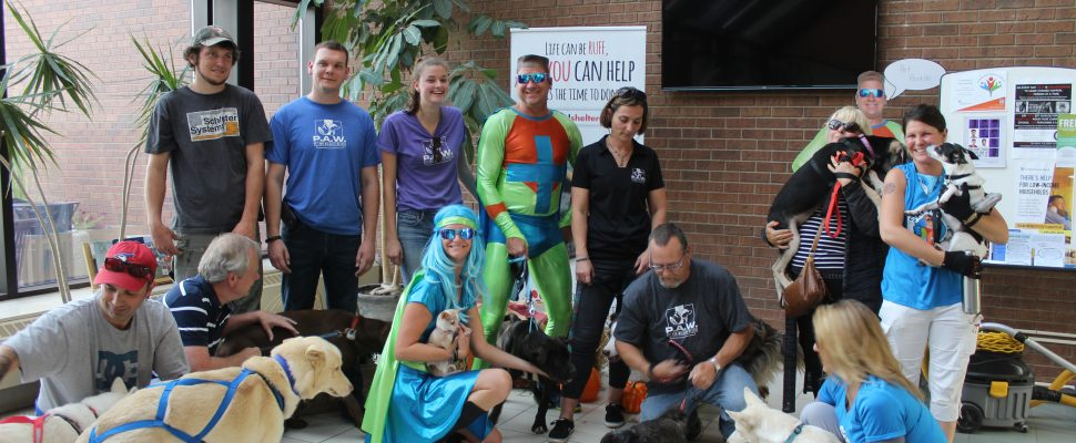 Pet Parade during Celebrate Your Pet Day in Chatham-Kent. September 11, 2017. (Photo by Sarah Cowan Blackburn News Chatham-Kent).