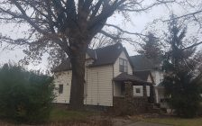 A burr oak, believed to be over 150-years-old is pictured here at 379 Russell St. S in Sarnia. (Photo by Rob Jenkins)