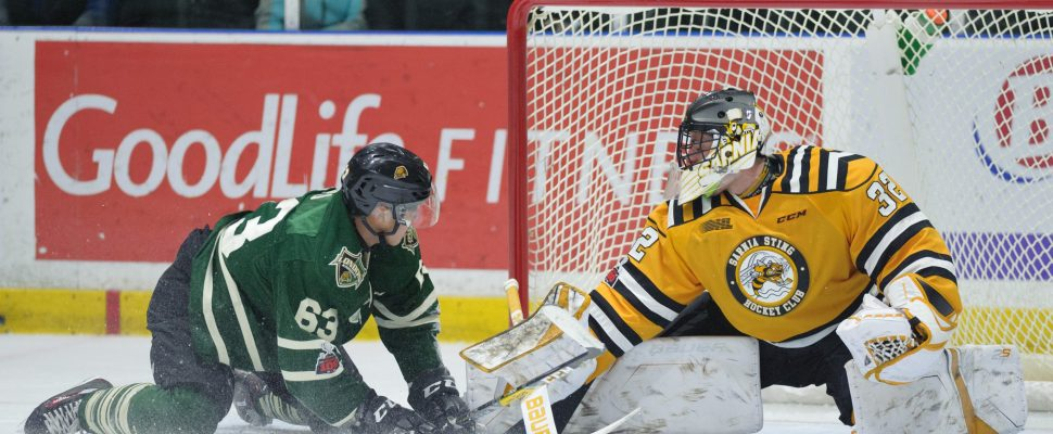 The London Knights take on the Sarnia Sting, November 22, 2017. (Photo courtesy of Metcalfe Photography)