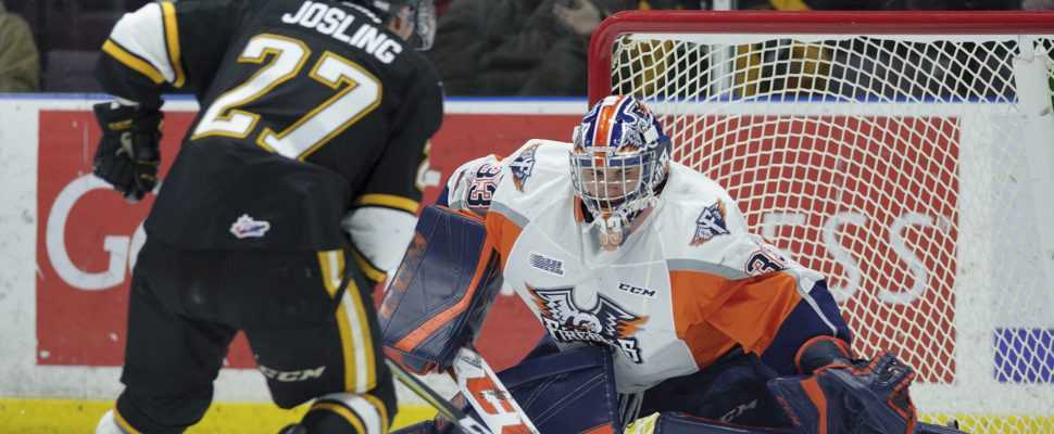 The Sarnia Sting beat the Flint Firebirds 7-1 led by 2 goals and an assist from Sean Josling. January 6, 2018. (Photo courtesy of Metcalfe Photography)
