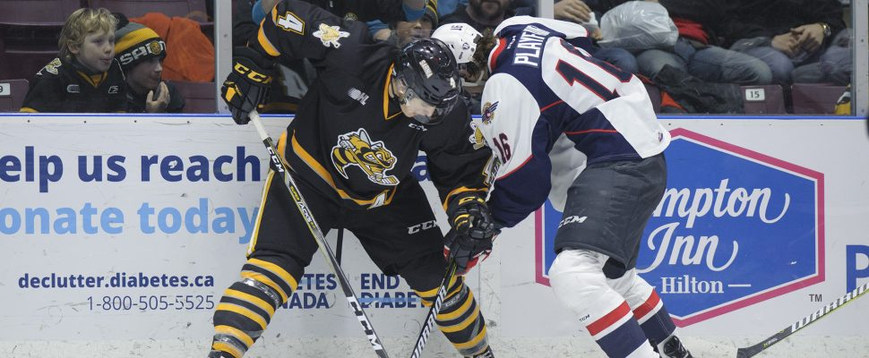 The Sarnia Sting take on the Windsor Spitfires, January 12, 2018. (Photo courtesy of Metcalfe Photography)