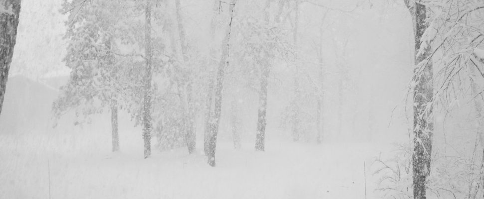 Snow storm. (© Can Stock Photo / redsand156)