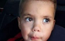 Toddler attacked by two dogs in Wallaceburg. (Photo taken from GoFundMe page).