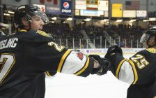 The Sarnia Sting defeat the Niagara IceDogs 5-4 in OT. February 10, 2018. (Photo courtesy of Metcalfe Photography)