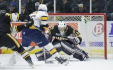 Sting goaltender Ethan Langevin braces for a shot from Otters forward Alex Gritz. February 24, 2018. (Photo courtesy of Metcalfe photography)
