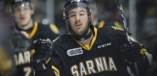 Anthony Salinitri celebrates his 22nd goal of the year in Sarnia's 5-1 win over London. February 3, 2018. (Photo courtesy of Metcalfe Photography)