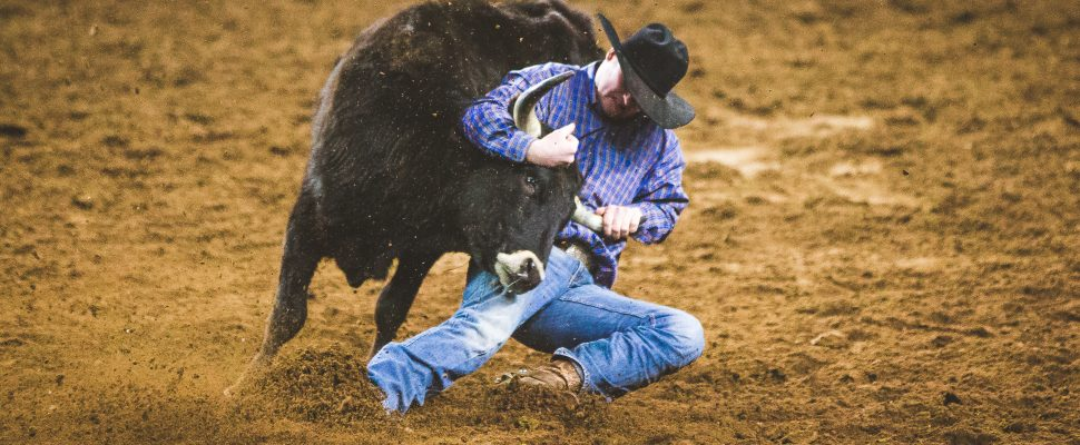 Foster wrestling a steer to the ground at the 48th International Finals Rodeo in Oklahoma City. January 2018. (Photo courtesy of Emily Gethke Photography)