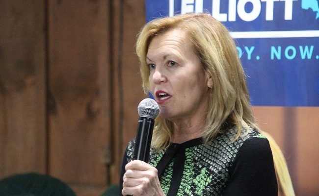 Ontario PC Party leadership candidate Christine Elliott addressing a town hall audience at Colasanti's in Kingsville, March 1, 2018. Photo by Mark Brown/Blackburn News.