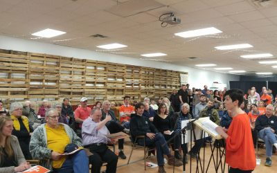 NDP candidate Kathy Alexander speaks to a crowd in Sarnia during a nomination meeting. April 17, 2018. (Photo by Colin Gowdy)