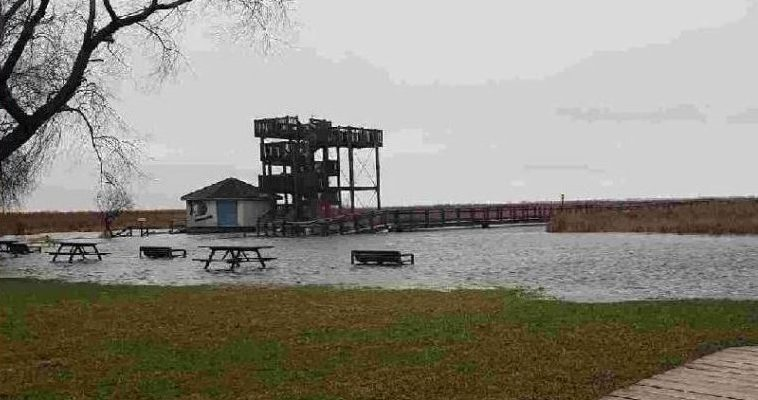 Flooding at Point Pelee National Park on Monday, April 16, 2018. (Photo courtesy of Point Pelee National Park)