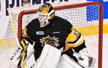 Brigden's Kaden Fulcher of the Hamilton Bulldogs. (Photo by Aaron Bell/OHL Images)