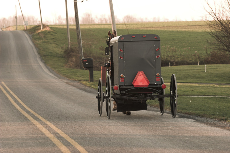 Spooked Horse Takes Buggy Into Ditch