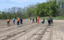 Enbridge staff joined SCRCA forestry specialists to hand plant 900 tree seedlings.