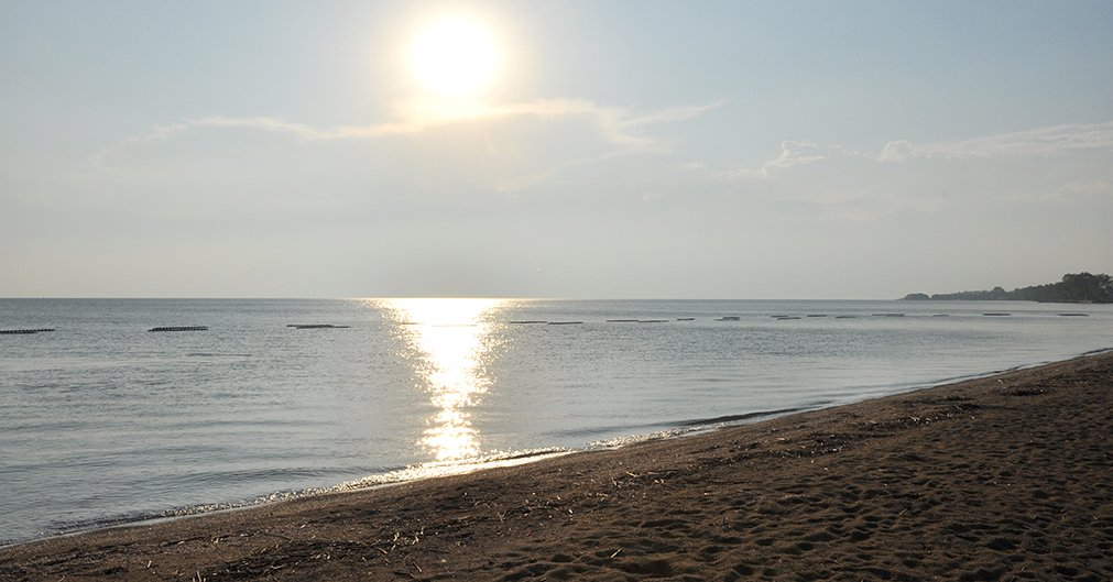 Four Local Beaches Have High Levels Of Bacteria